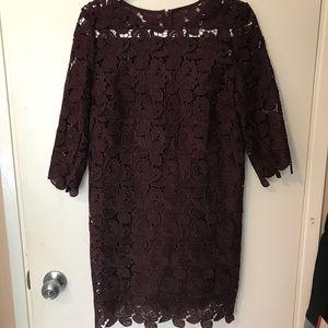 Loft burgundy lace midi dress
